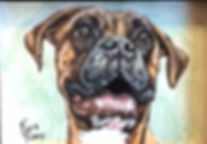 Custom painted dog portrait of Max a boxer dog, painted by professional dog artist Fiona Purdy