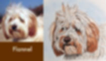 Tibetan Terrier portrait painting with photo