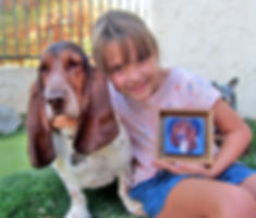 Custom pet painting of Basset Hound