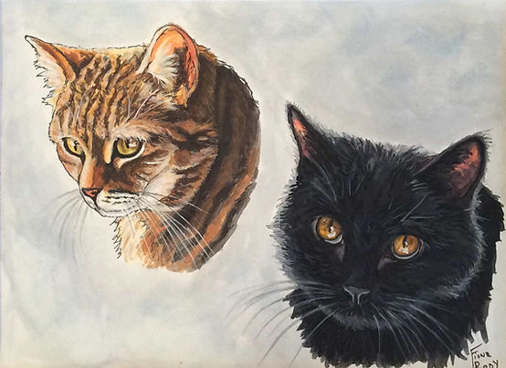 Painted cat portraits of Lucy & Henry, short haired domestic cats by United States pet portrait artist, Fiona Purdy.
