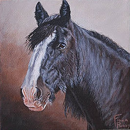 Hand Painted Portrait of Shire Horse