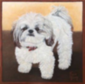 Custom hand painted dog portrait of Shu Shu a Shih Tzu.  Portrait created from a dog photo by professional pet portrait artist Fiona Purdy