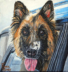 Custom hand painted pet portrait of Hanna a German Shepherd dog, her portrait was created by professional dog artist Fiona Purdy
