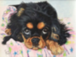 Custom hand painted pet portrait of Duchess, a Cavalier King Charles Spaniel puppy, her portrait was created by professional dog artist Fiona Purdy