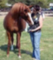 Fiona Purdy pet artist with Arabian Horse