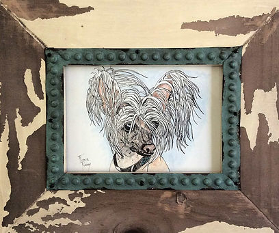 Custom pet portrait Chinese Crested dog