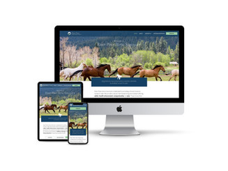 Website Design for Horse Sanctuary