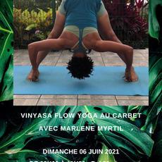 Atelier de Vinyasa Flow Yoga - dimanche  06  juin 2021