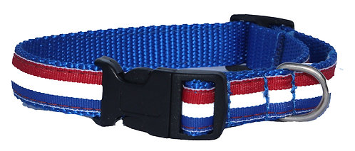 Red, White, and Blue Trimmed Collar