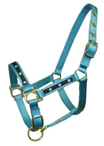 Turquoise Dot Mini Halter