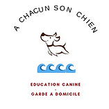 logo carène2.png
