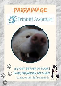 parrainageprimitifaventure1.png