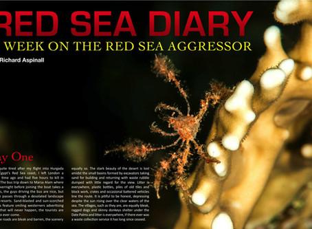 Depth magazine feature: Red Sea Diary