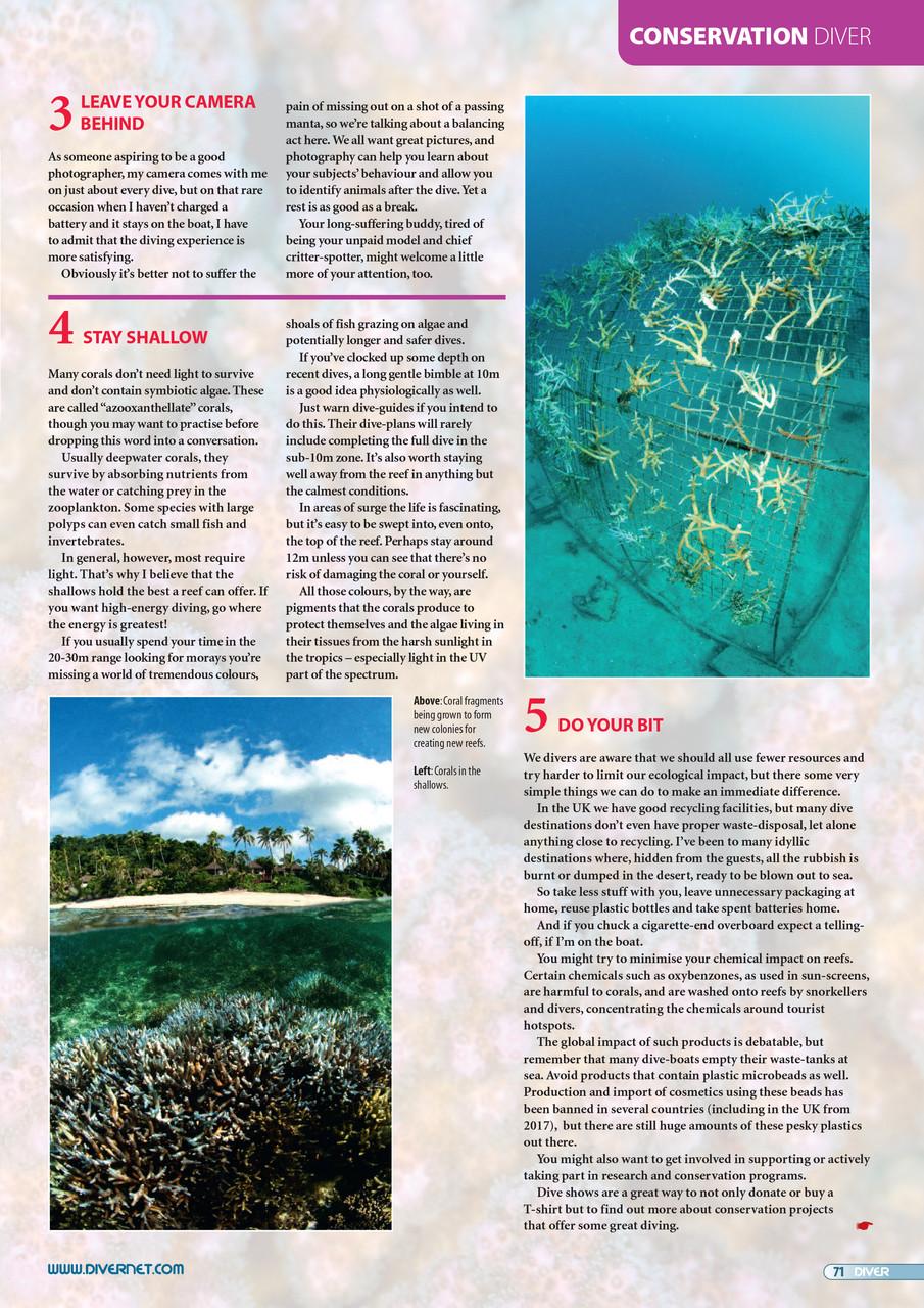 Coral-Sensitive-3