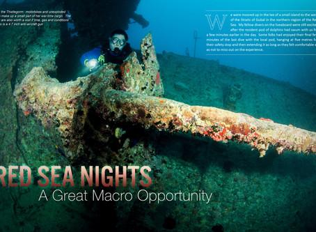 Depth magazine feature: Red Sea Nights