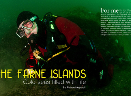 Depth magazine feature: The Farne Islands