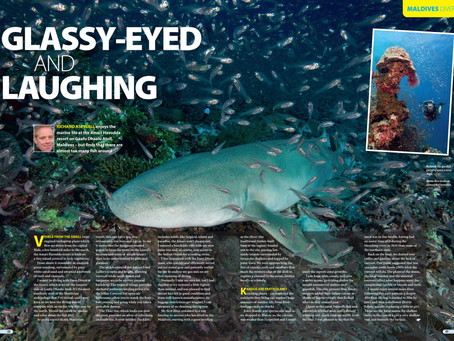 Diver magazine feature: Amari Maldives