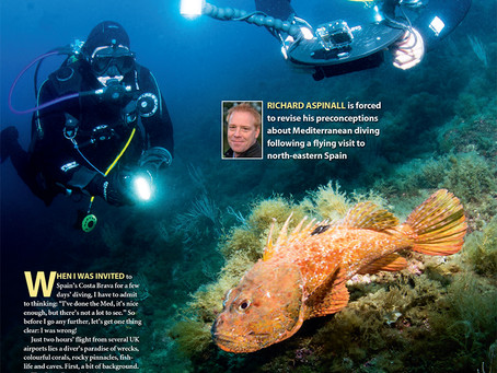 Diver magazine feature: Brava Bravo