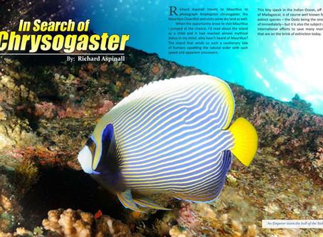 Depth magazine feature: Diving in Mauritius
