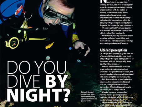 Diver magazine feature: Do you dive by night?