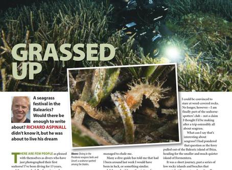 Diver magazine feature: Formantera Sea Grass Festival