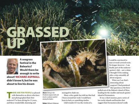 Diver magazine feature: Formantera Sea Grass Festival