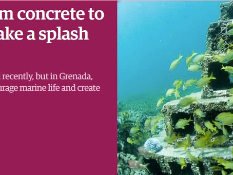 The Guardian: From concrete to coral: breeze blocks make a splash regenerating reefs
