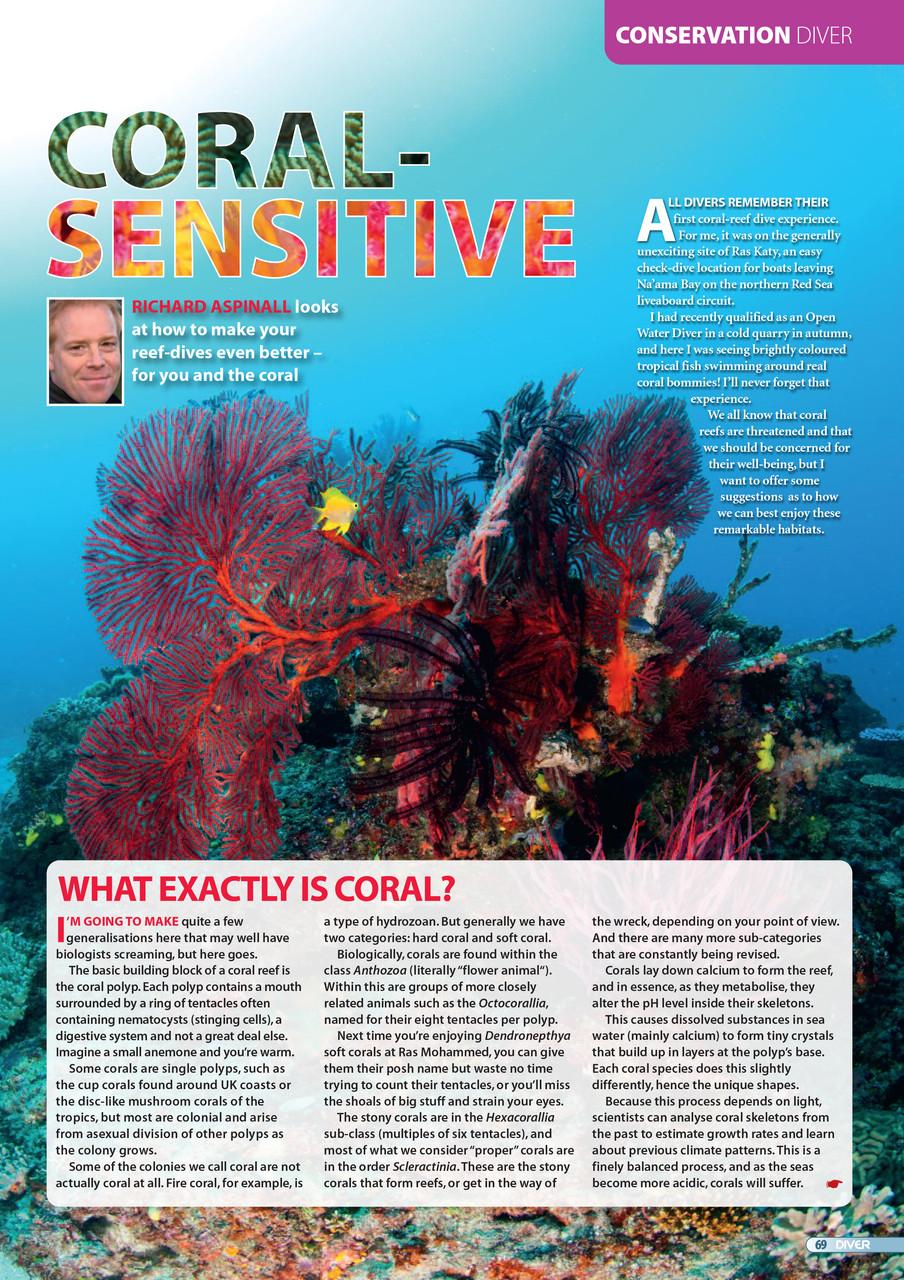 Coral-Sensitive-1
