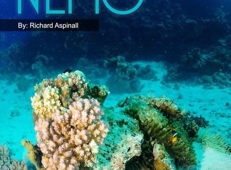 Depth magazine feature: Shooting Nemo