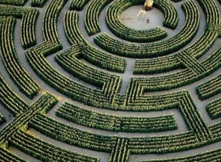 The Complex Labyrinth of rules and regulations, called International Estate Planning