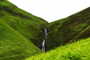 Flowing waters (W).jpg