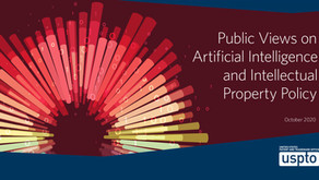 Public Views on Artificial Intelligence and Intellectual Property Policy