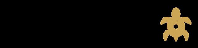 STMCS Logo - banner - transparent black