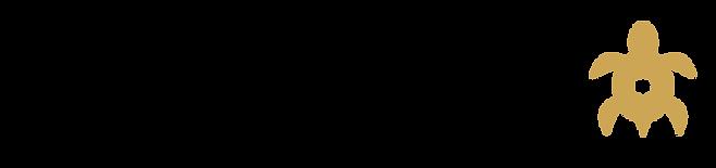 STMediaSolutions Logo - banner - transpa