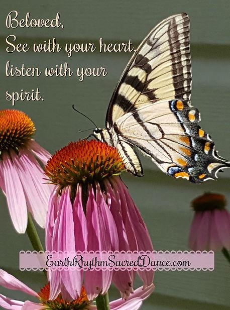 Summer butterfly.jpg