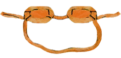 watercolor illustration of a pair of orange swim goggles