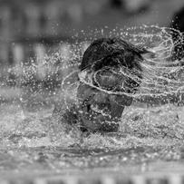 5 Things That Happen When You're the Only Swimmer in Your Family