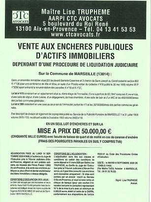 Avis_simplifié_audience_des_ventes_du_1
