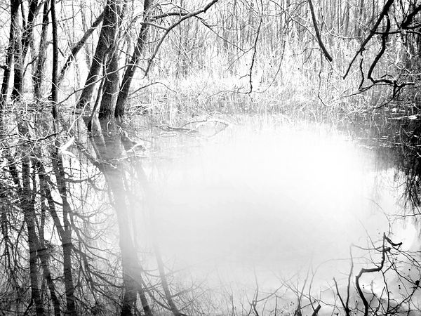 5   L'era successiva ( Natura) 2012,  di