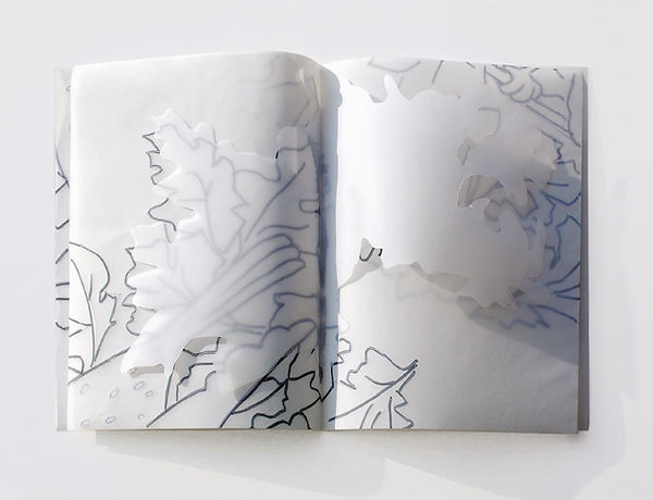8  Il libro dei fiori, 1997,  41x56x4 cm