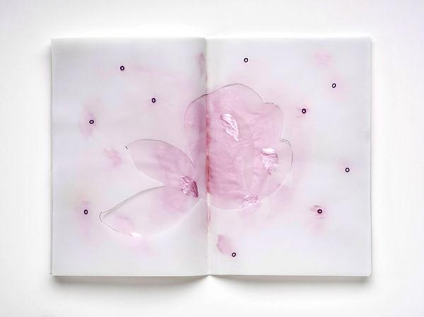 6   Il libro dei fiori, 2014, 30x42x4 cm