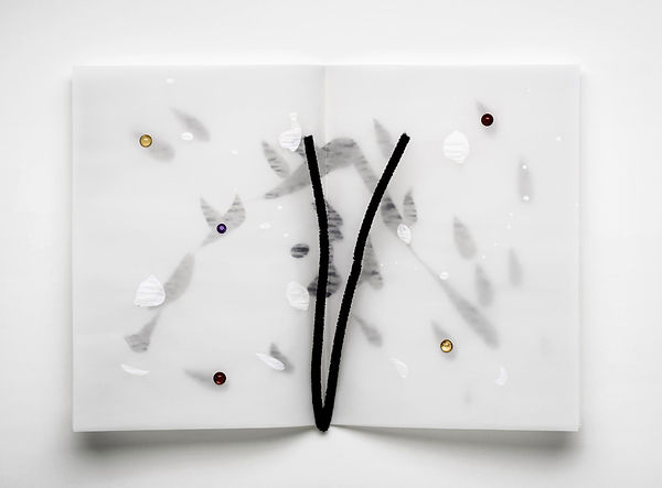 4    Il libro della neve,  2014,    30x4