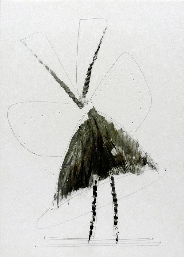 7   La versione di Dulcinea, 2009, 42x30