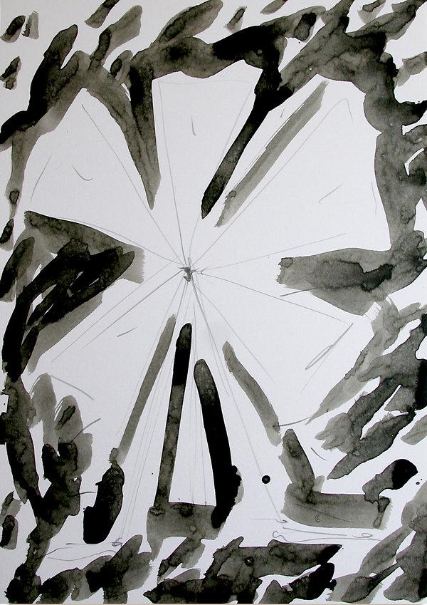 3   La versione di Dulcinea, 2009, 42x30