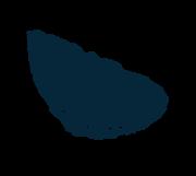 huitre-1.png