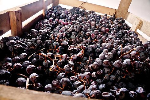 dried_grape.jpg