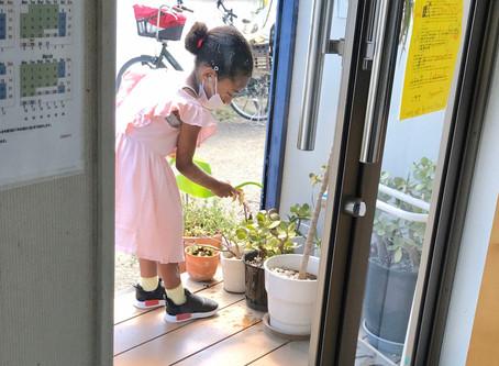 モンテッソーリ教育と一般の幼児期教育はどのように違うのか?