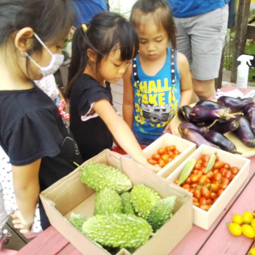 季節の野菜をマーケットで売りました。