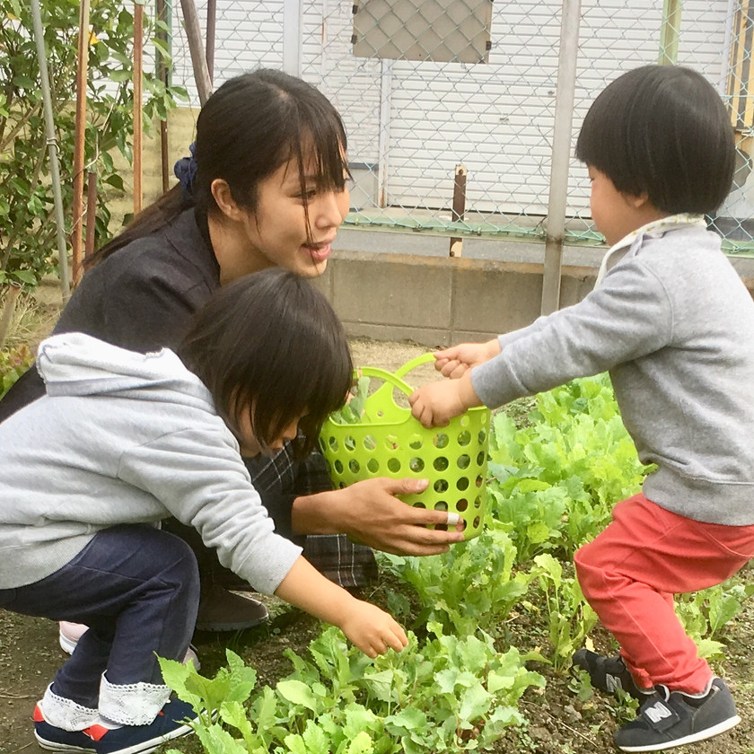 Ayakaと野菜の収穫