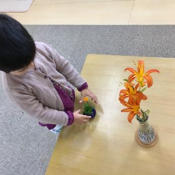 教室に花を飾ろう!